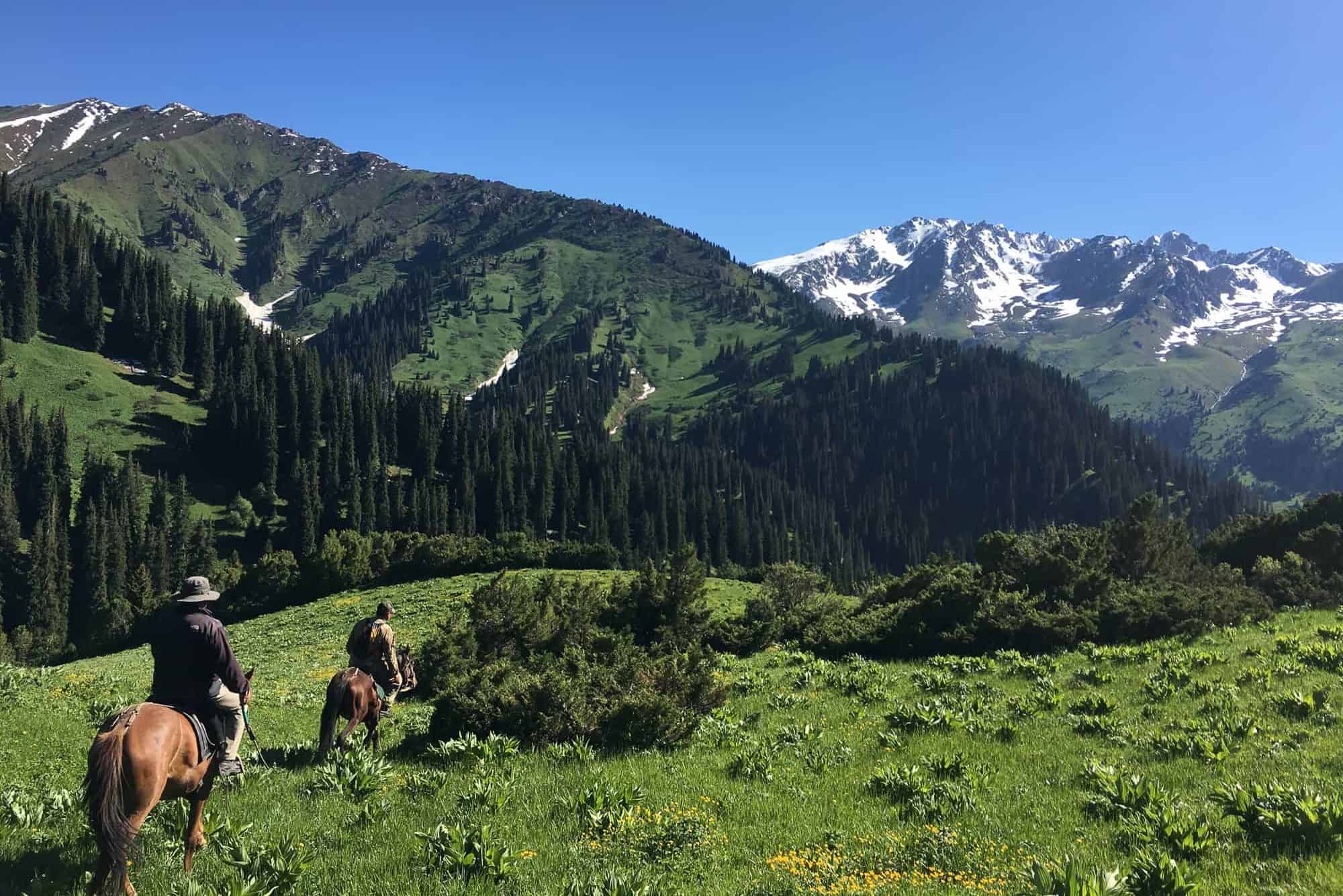 how to go horseback riding Discover horseback riding tours and trips in europe, asia, latin america, and around the world read reviews of horseback riding tour providers and get tips.